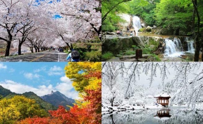 Buốn mùa khí hậu của Hàn Quốc